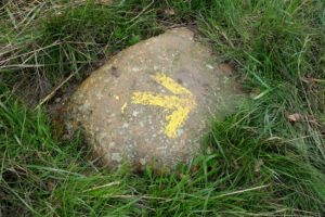 Stone with yellow arrow on the Camino Frances during the Saint James Way