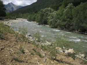 Aragon River in the Pyrenees surrounded by green trees
