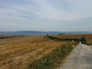 Sendero del Camino Francés