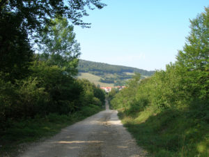 Path without pavement from Burguete to Espinal