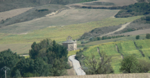 Church of Santa Maria de Eunate surrounded by fields of cereal and vineyards
