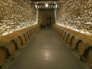 Interior of a winery in Logroño with a lot of barrels inside