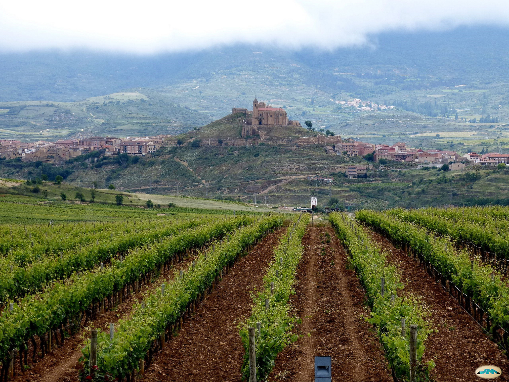 La Rioja vineyard with the village of Briones in the background
