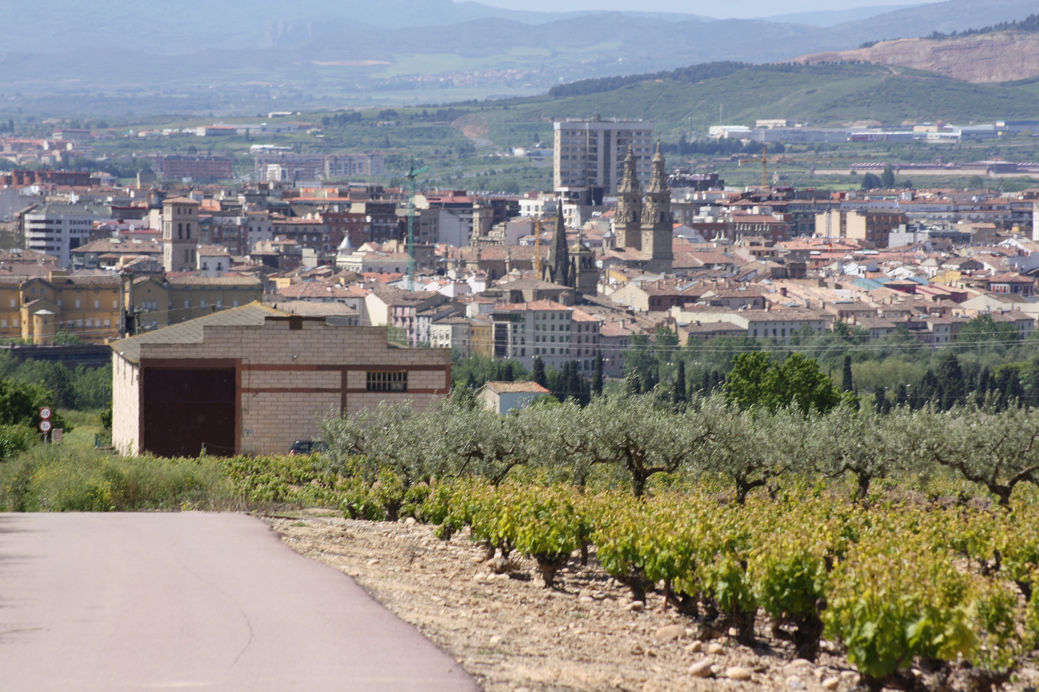 Road at the entrace to Logroño with the city in the background