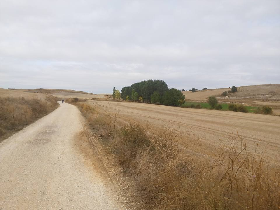 Rabé Trail of the Causeway to Hornillos Del Camino, surrounded by desert fields