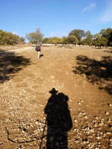 The shadow of a pilgrim in the ascent to the mountain range of Atapuerca