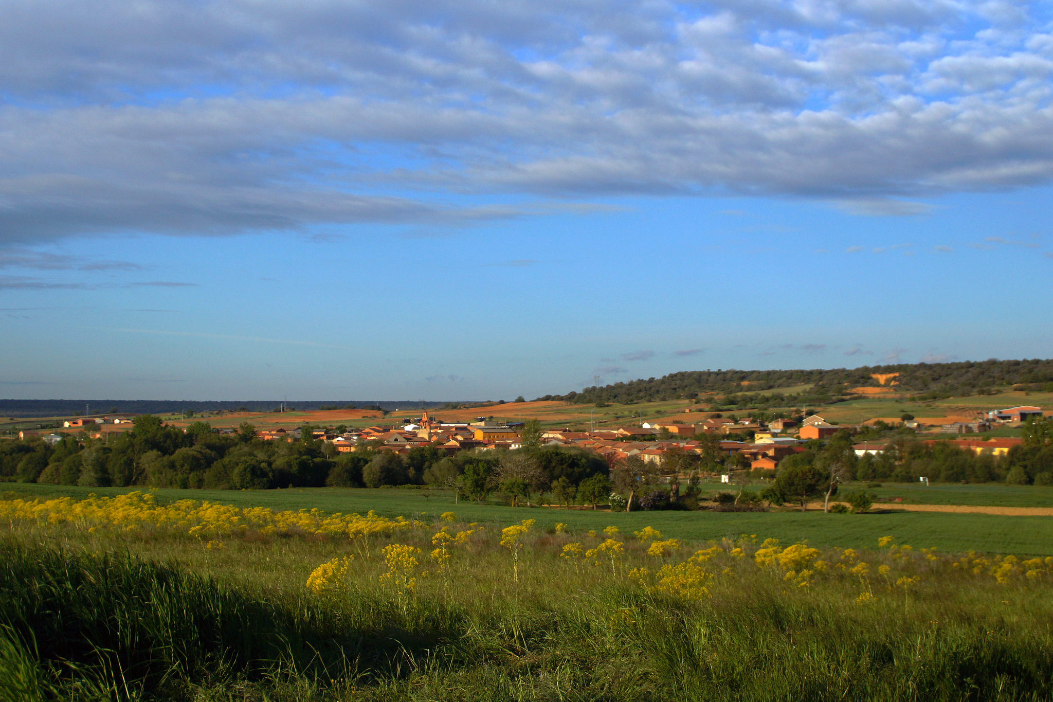 Santibáñez de Valdeiglesias, surrounded by green fields