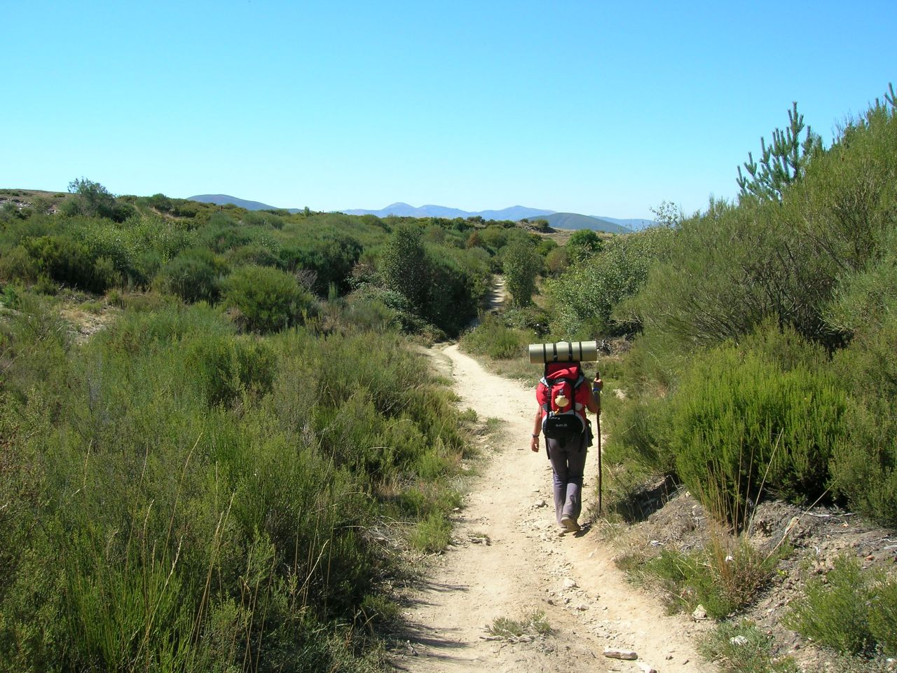 Pilgrim walking through a path in Manjarín