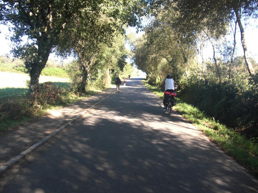 Peregrinos andando y en bici por una pista asfaltada desde O Hospital hasta Palas