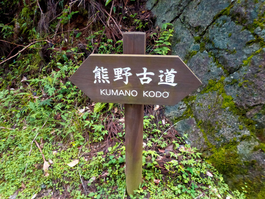 El Kumano Kodo posee muchas similitudes con el Camino de Santiago, y ambos están hermanados