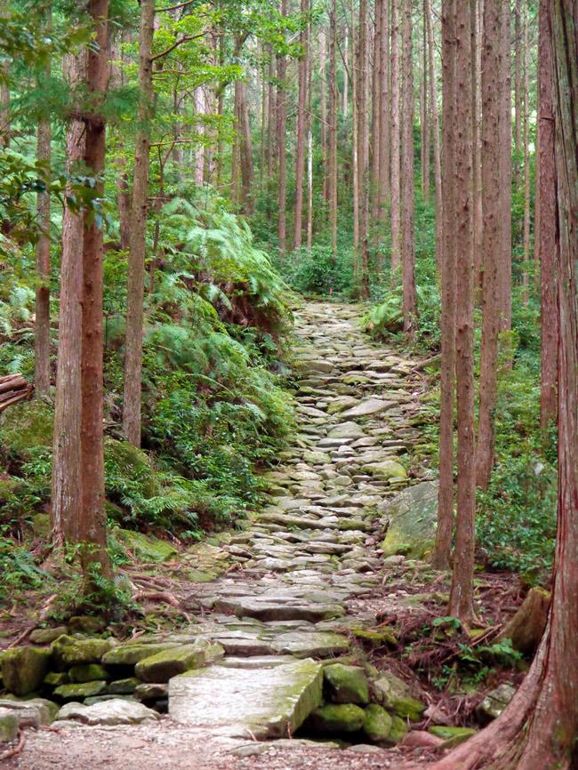 Ruta de nakahechi, la más popular del Kumano Kodo