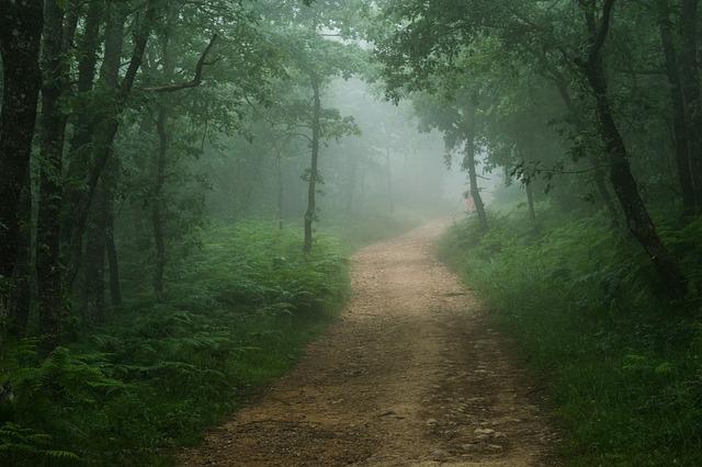 rutas-camino-santiago-tournride